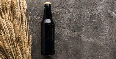 Cerveza de Trigo - Características de la cerveza de Malta de Trigo.